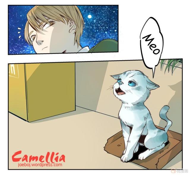 camellia-014